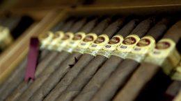 Best Cigar Humidors