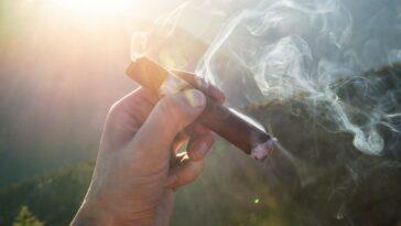 How Many Cigars Do You Smoke a Day